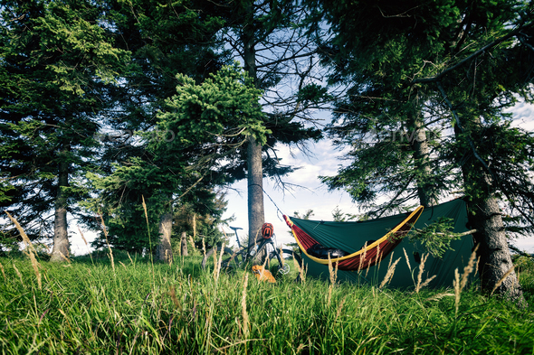 Camping with hammock  in summer woods on bike travel - Stock Photo - Images