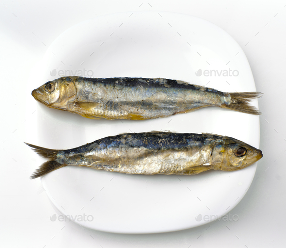 two salt herring sardines, ordered in white dish - Stock Photo - Images