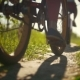 Legs of Cyclists, Two Young Girls Passing on a Path in a Green Forest on a Sunny Day - VideoHive Item for Sale