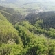 Flight Over the Forest in the Mountains and Village View of Ukrainian Carpathians - VideoHive Item for Sale