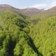 Flight Over the Forest in the Mountains. Aerial View of Ukrainian Carpathians - VideoHive Item for Sale