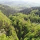 Flight over the Forest in the Mountains of Ukrainian Carpathians - VideoHive Item for Sale