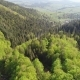 Flight over the Forest in the Mountains and Village - VideoHive Item for Sale