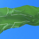 Flag of Ladonia Waving - VideoHive Item for Sale