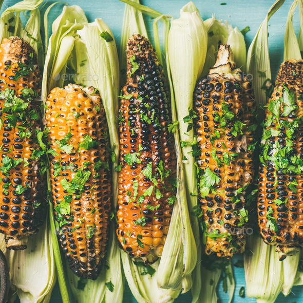 Flat-lay of grilled sweet corn with spices, square crop - Stock Photo - Images