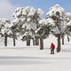 Skiing on a beautiful snow forest landscape. Winter sport. Horizontal - PhotoDune Item for Sale