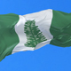 Flag of Norfolk Island Waving - VideoHive Item for Sale