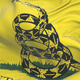 Don't Tread On Me Gadsden Flag - VideoHive Item for Sale