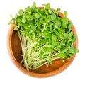 Flax microgreens in wooden bowl over white - PhotoDune Item for Sale