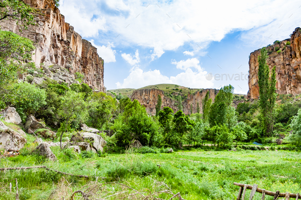 green meadow in Ihlara Valley in Cappadocia - Stock Photo - Images