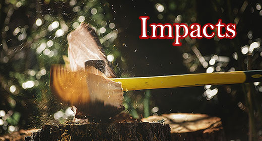 Impacts Collection