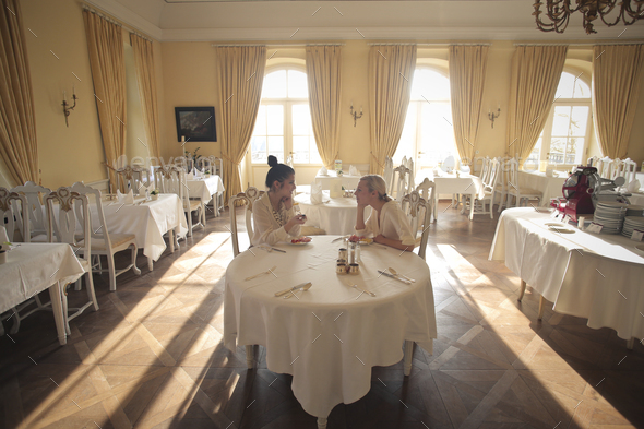 Two girls in an elegant restaurant - Stock Photo - Images