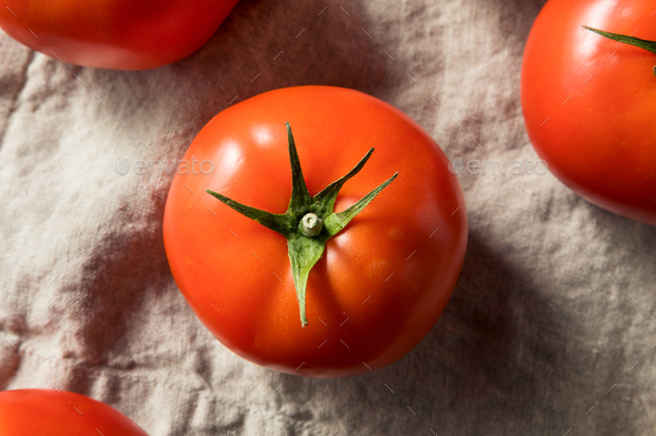 Raw Red Organic Tomatoes - Stock Photo - Images