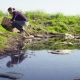 Ecologist Taking Samples of the Water - VideoHive Item for Sale