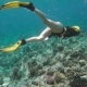 Sexy Free Diver Exploring Coral Reef in Sea - VideoHive Item for Sale