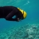Woman in Black Suit Free Diving On a Coral Reef - VideoHive Item for Sale