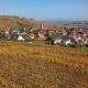 Flight Over Autumn Riquewihr Vineyards, Alsace, France - VideoHive Item for Sale