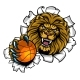 Lion Holding Basketball Breaking Background
