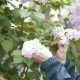 Girl, Breaks Off a Sprig of Lilac and Sniffs, Summer Day - VideoHive Item for Sale