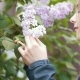 Blooming Lilac, Girl Enjoying the Smell of Flowers - VideoHive Item for Sale