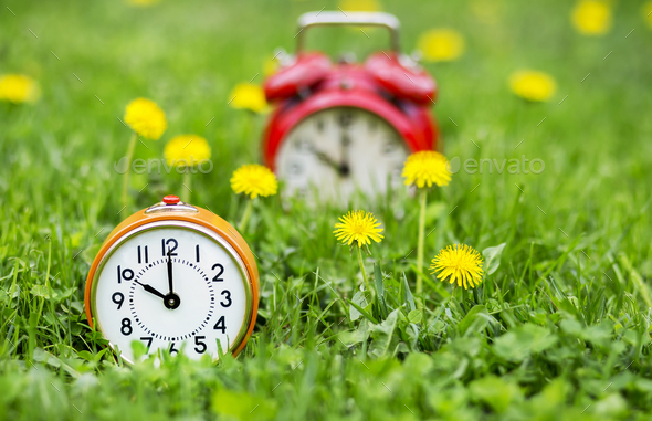 Summertime - clocks and flowers in the grass - Stock Photo - Images