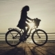 Silhouette of Young Woman with Curly Hair Riding Vintage Bike Near Sea During Sunrise or Sunset - VideoHive Item for Sale