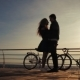 Silhouettes of Young Couple Standing Together with Bicycles on Sea Embankment - VideoHive Item for Sale