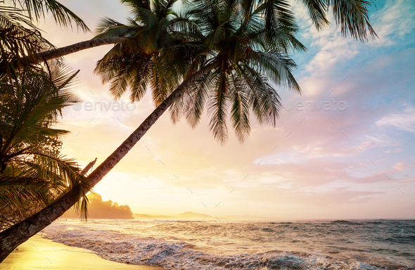 Coast in Costa Rica - Stock Photo - Images