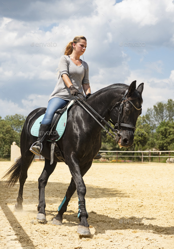 woman rider and horse - Stock Photo - Images