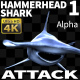 Hammerhead Shark 1 Attack - VideoHive Item for Sale