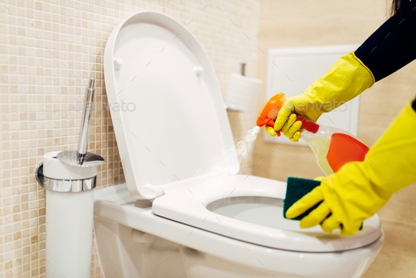 Maid cleans the bidet with a cleaning spray - Stock Photo - Images