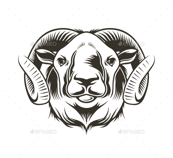Bighorn Sheep - Animals Characters