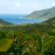 Tropical Rain Forest Landscape with Volcanic Mountains above the Lush Green Jungle of Exotic Island - VideoHive Item for Sale