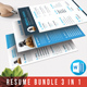 Resume Bundle - GraphicRiver Item for Sale