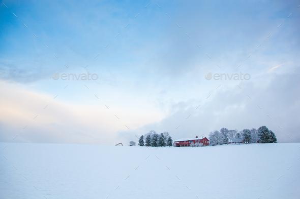 beautiful winter landscape snow farm house - Stock Photo - Images