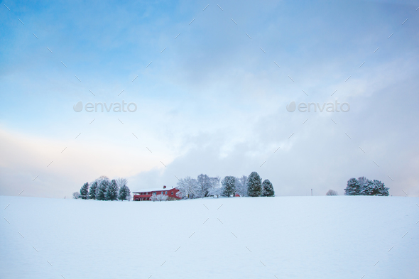 beautiful winter landscape snow farm house - Stock Photo - Images