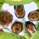 Five Young Volunteers in Green T-shirts with a Picture of Recycle Forming Huddles under Palm Trees - VideoHive Item for Sale
