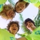 Four Young Volunteers in Green T-shirts with a Picture of Recycle Forming Huddles under Palm Trees - VideoHive Item for Sale