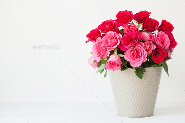 beautiful red rose flowers bouquet in vase over white - Stock Photo - Images