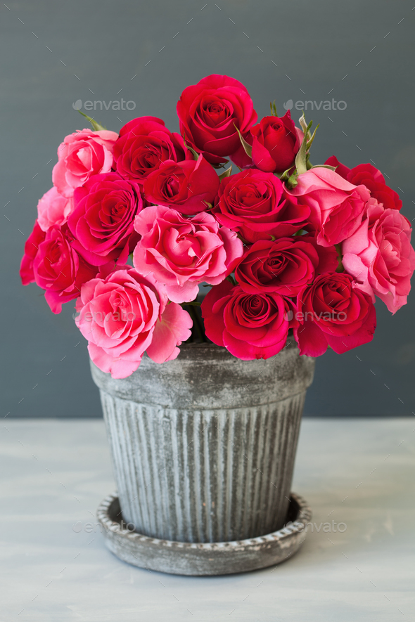 beautiful red rose flowers bouquet in vase - Stock Photo - Images