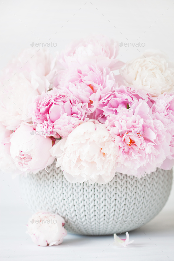 beautiful pink peony flowers bouquet in vase - Stock Photo - Images
