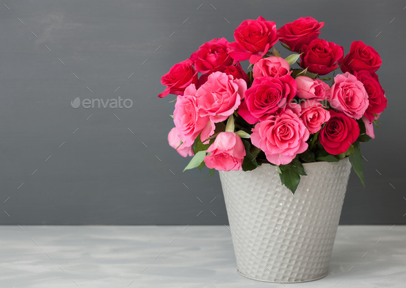 beautiful red rose flowers bouquet in vase over gray - Stock Photo - Images