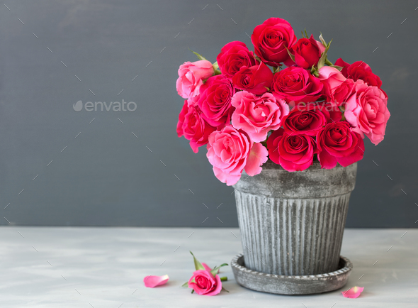 Photodune & beautiful red rose flowers bouquet in vase over gray