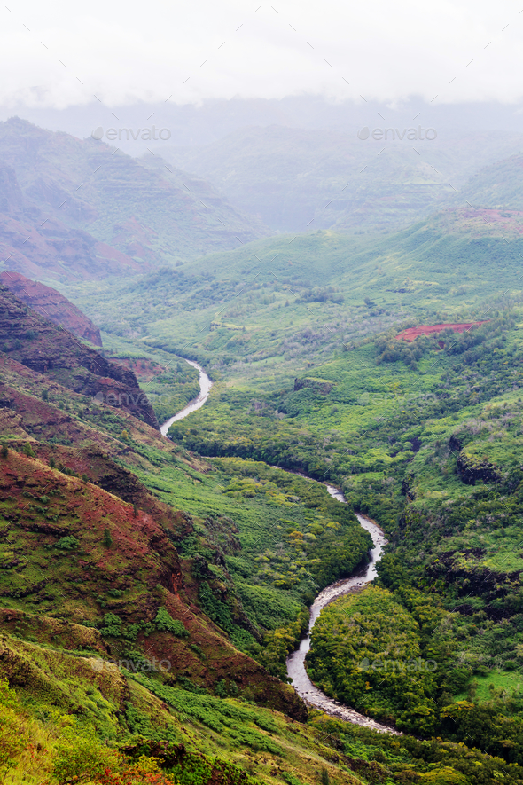 Waimea canyon - Stock Photo - Images