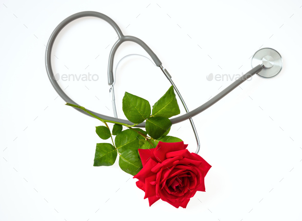 Stethoscope and red rose with green leaves on white background, top view - Stock Photo - Images