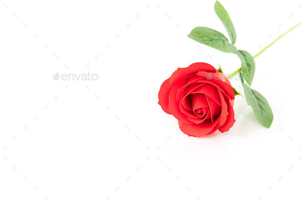Single Red plastic fake roses on white_ - Stock Photo - Images