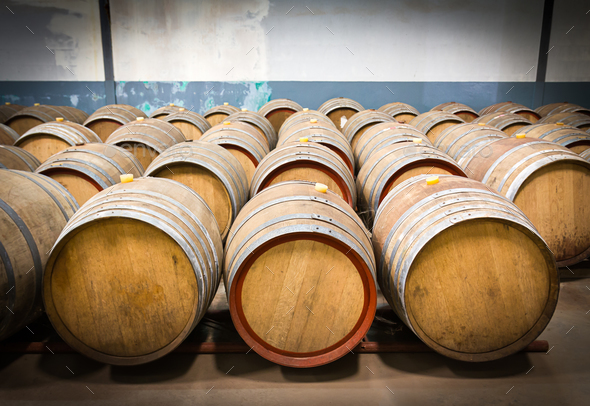 Wine barrels in the cellar of the winery-5 - Stock Photo - Images