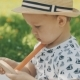 Little Boy Playing with Toy on Picnic. Happy Family Concept
