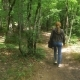 Woman Photographer Walking in the Forest with a Camera Bag, Rear View, Shot Stedikam. , - VideoHive Item for Sale