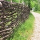 Wicker Fence Along the Forest Trail. Steadicam Shot - VideoHive Item for Sale